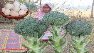 Farm Fresh Broccoli Crispy Recipe The Best Healthy Cooking Fresh Broccoli Harvesting With Egg Curry