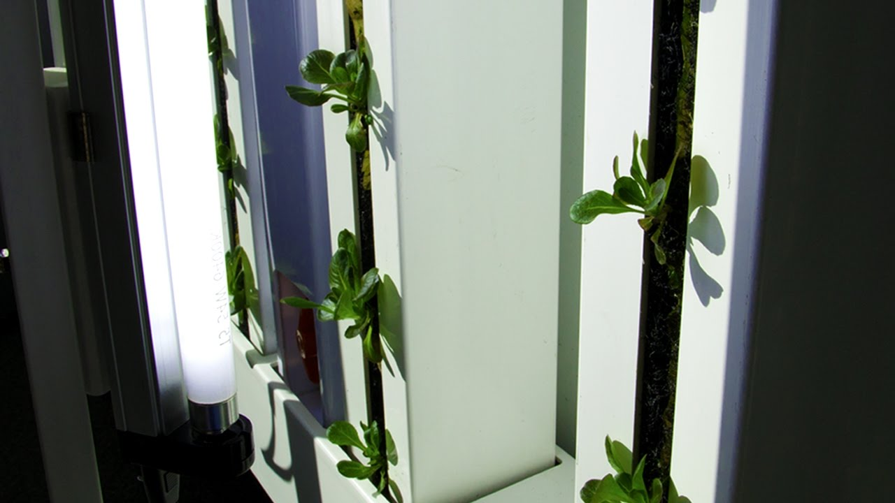 Grow a vertical garden indoors with the farm wall light kit youtube grow a vertical garden indoors with the farm wall light kit workwithnaturefo