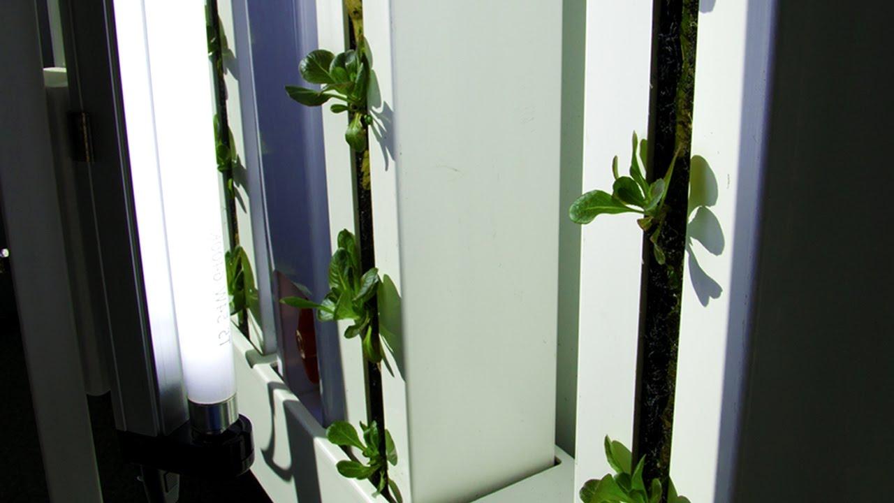 Grow A Vertical Garden Indoors With The Farm Wall Light Kit