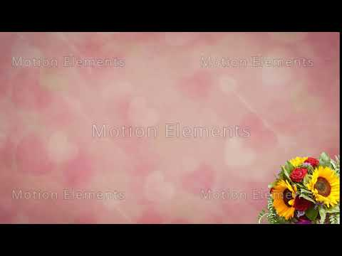 Valentine Video Background Loop 04 Pink Heart