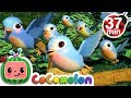 Five Little Birds 3 + More Nursery Rhymes & Kids Songs - CoCoMelon