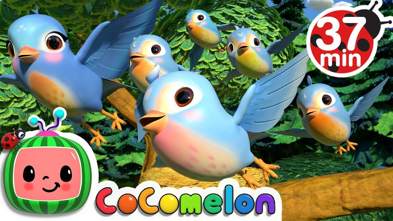 Five Little Birds 3 + More Nursery Rhymes & Kids Songs - CoCoMelon