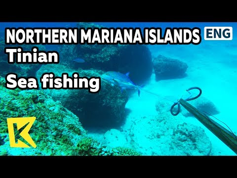 【K】Northern Mariana Islands Travel-Tinian[북마리아나제도 여행-티니안]원주민과 바다낚시/Sea fishing/Speargun/Chamorro