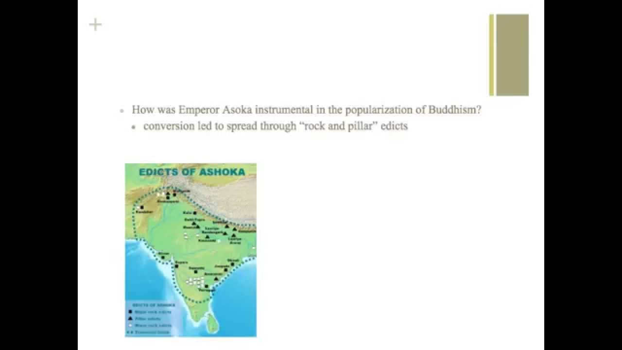whap ccot study guide Smit shah 7th period whap ccot essay the silk road was a trade route that connected eurasia and africa by land as well find study resources  find study resources .