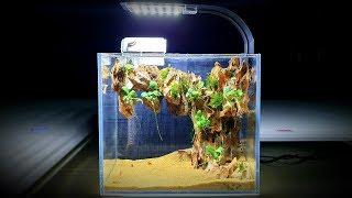 How To Build A Mini Desk Aquarium at home