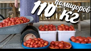 5 ОБАЛДЕННЫХ РЕЦЕПТОВ ИЗ ПОМИДОРОВ НА ЗИМУ/ WHERE TO PUT 110 KG OF TOMATOES? 5 HIT SEASON!