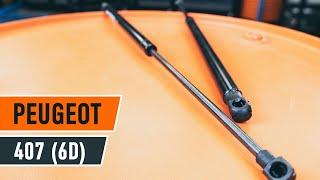 Uživatelský manuál Peugeot 407 Sedan online