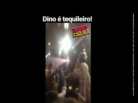 Dino Tequileiro Estação Pop
