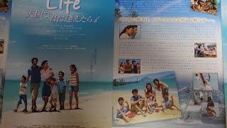 Life 天国で君に逢えたら 2007 映画チラシ 2007年8月25日公開 シェ...