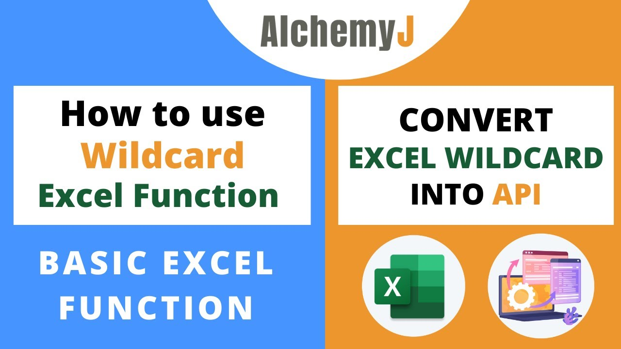 Basic Excel Function - Wildcards Function in Excel