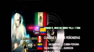 CUMBIA Y SALSA SONIDERA 5 TEMA A SABOR DEL BARRIO VOL.5