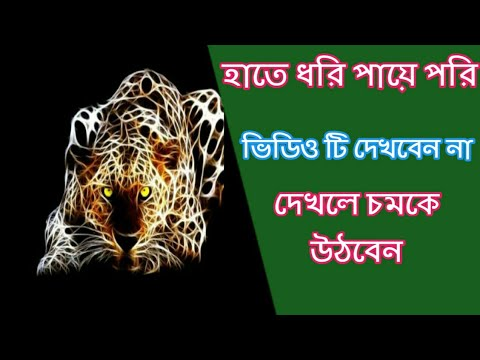 LIVE 3D TYPE WALLPAPER APP FOR ANDROID MOBILE / ZERO WALLPAPERS ! JDM XPRESS in Bangla