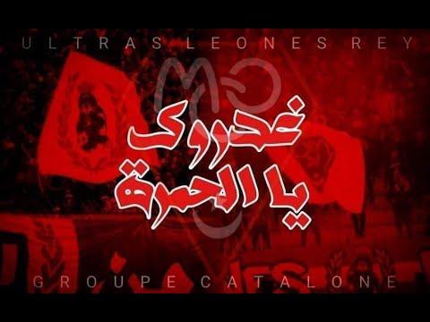 GROUPE CATALONE @Fan_MCO 2021 ghadrouk ya lhamra
