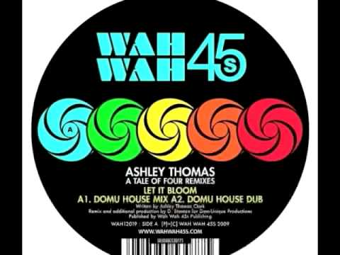 Ashley Thomas- Would You Cry? (Part Time Heroes Remix) mp3