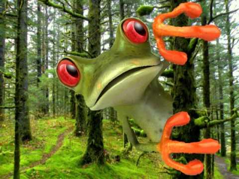 Funny Birthday Song Tango the Tree Frog