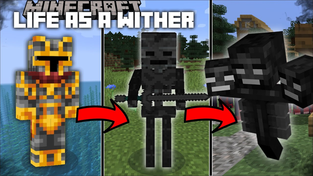 Minecraft LIFE AS A WITHER SKELETON MOD ...