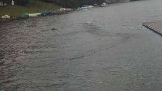 32 Catamaran Brushless rc boat apparition