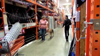 Max Training At Home Depot