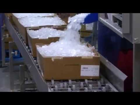 US Catfish Industry 2013