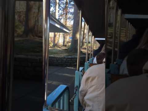 Turtle back zoo train ride
