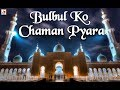 Download New Ramzan Special Qawwali 2017 - Urdu Sufiyana Qawwali - Bulbul Ko Chaman Pyara Qawwali 2017 MP3 song and Music Video