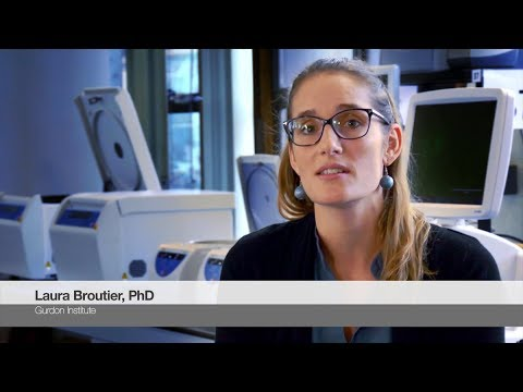 3D Cell Culture and Analysis: Thoughts from Laura Broutier, PhD