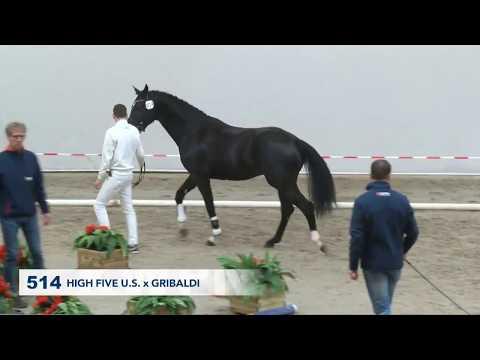 514 Livius (High Five U.S. X Gribaldi)
