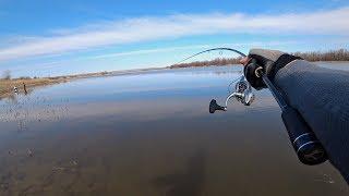 Наглость Браконьеров Поражает ОГО сколько здесь рыбы Рыбалка на спиннинг