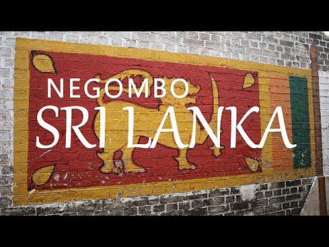 Negombo, Sri Lanka (Leave to Roam Sri Lanka Ep 1)