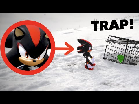 I CAPTURED SHADOW IN REAL LIFE!