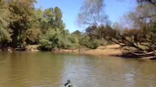 Kayaking Hatchie River