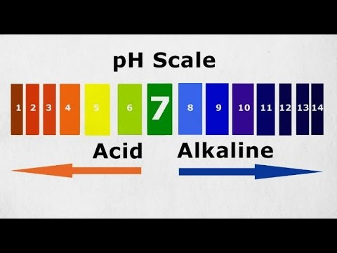 What You Should Know About Alkaline Water....