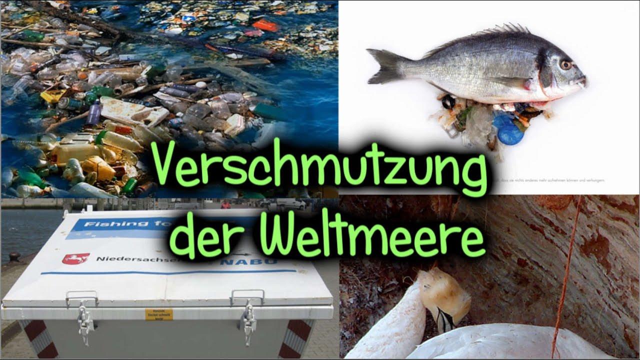 Weltmeere Verschmutzung