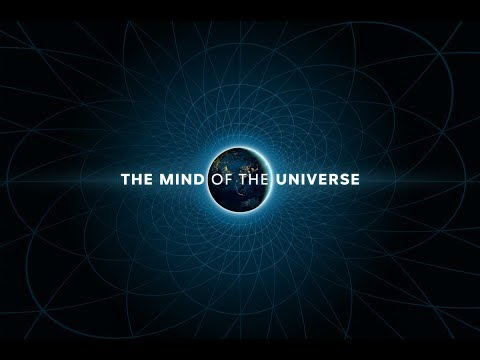 The Mind of the Universe (de illusionist) - Documentaire 2017