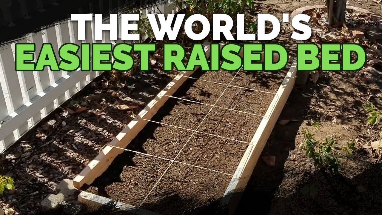 How To Build Diy Raised Garden Beds In Under 30 Minutes