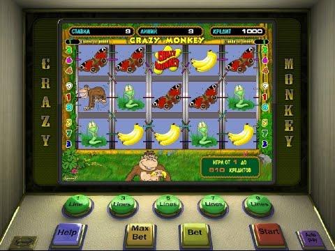 Видео Игровые автоматы обезьянки скачать бесплатно