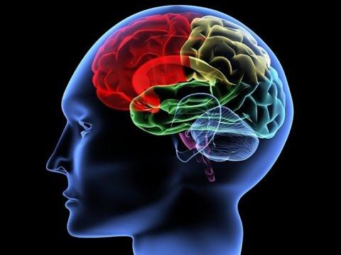 05. Nakarm Swój Mózg - Jak Dieta Wpływa Na Nasze Emocje