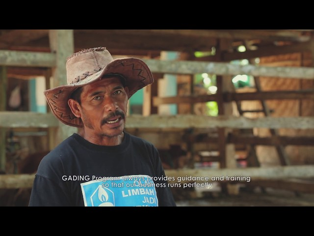 Video Feature GADING Project