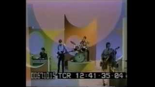 Lovin' Spoonful, Joe Butler singing Only Pretty, What a Pity Live 1...