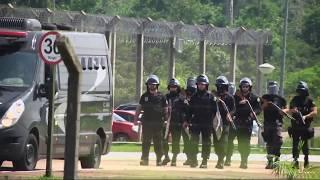 Gambar cover PF realiza operação em presídio federal de Rondônia