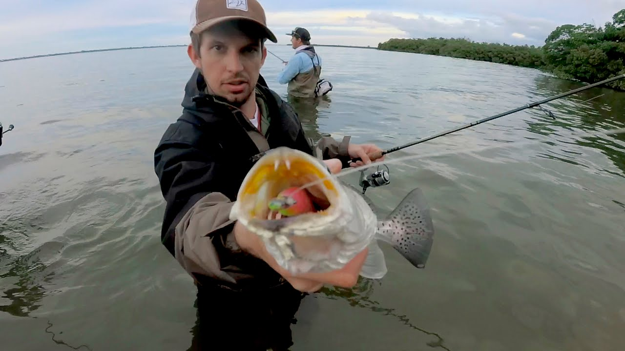 Wade fishing for speckled trout in the indian river lagoon for Indian river florida fishing