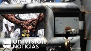 Hay más de 1,000 mexicanos presos en el extranjero: 71 de ellos están condenados a muerte en EEUU