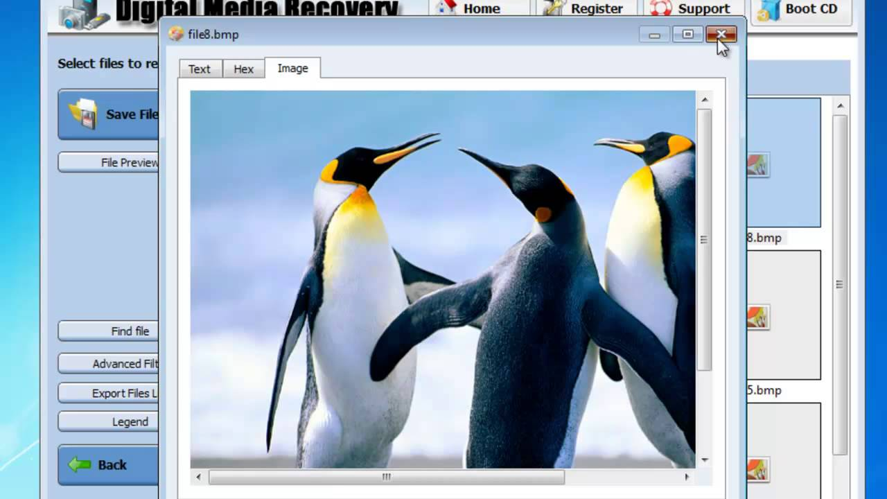 BMP File Recovery Software - Recover BMP File
