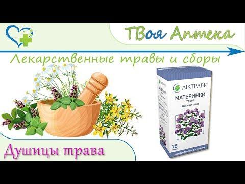 Душицы трава (Материнки) показания, описание, отзывы (Заболевания печени)