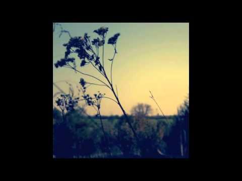 Asaf Avidan (Wankelmut Remix) - One Day / Reckoning Song | Original Track