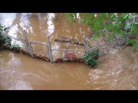 Flooding in Modesto, Ca. Dry Creek at Moose Park- La Loma Area
