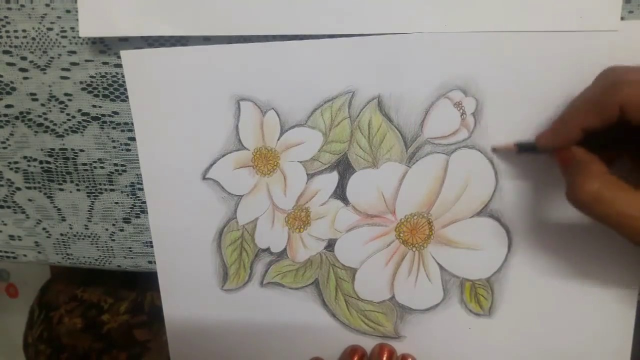 How To Draw White Flowers Without Using White Colour 10 Youtube