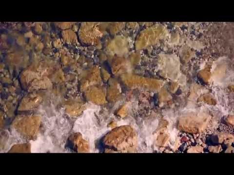 martin-garrix-&-julian-jordan-bfam-(official-video-music)-hd