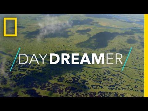 Playful Manatees, Mangrove Kayaking, and More | National Geographic
