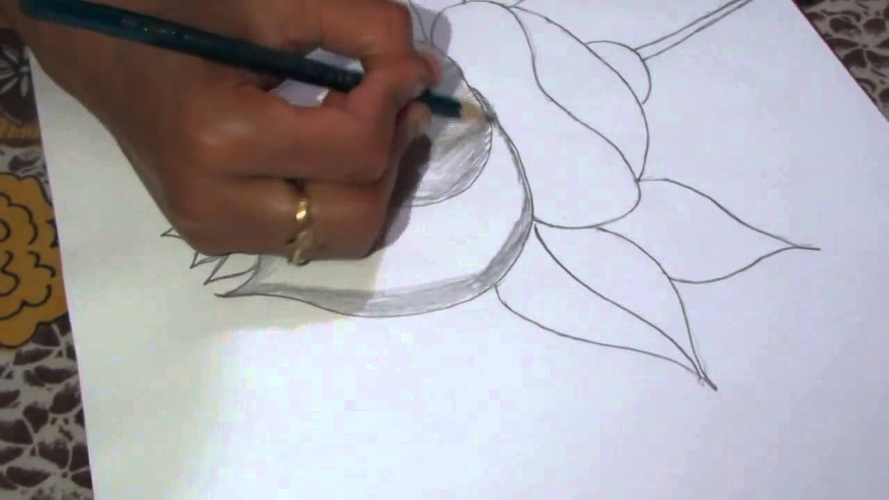 How To Draw And Sketch A Lotus Flower Using Pencil Youtube
